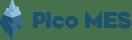 PicoMES-Logo-SiteVersion
